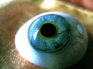 glass-eye-credit-glasseyesview-flickr-cc-by-sa-2-0